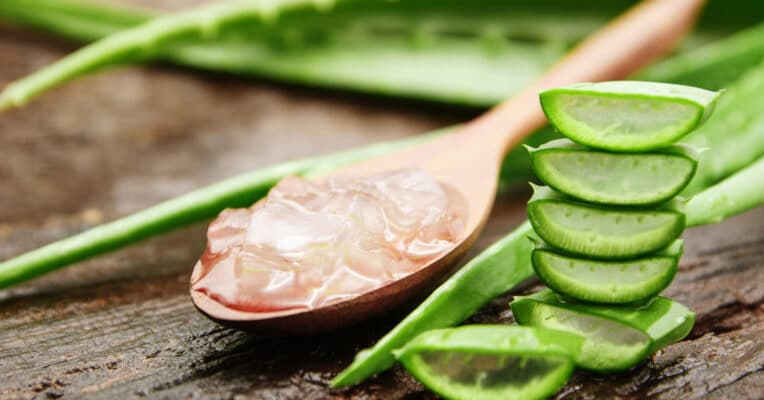 You should know that about the wonder plant Aloe Vera